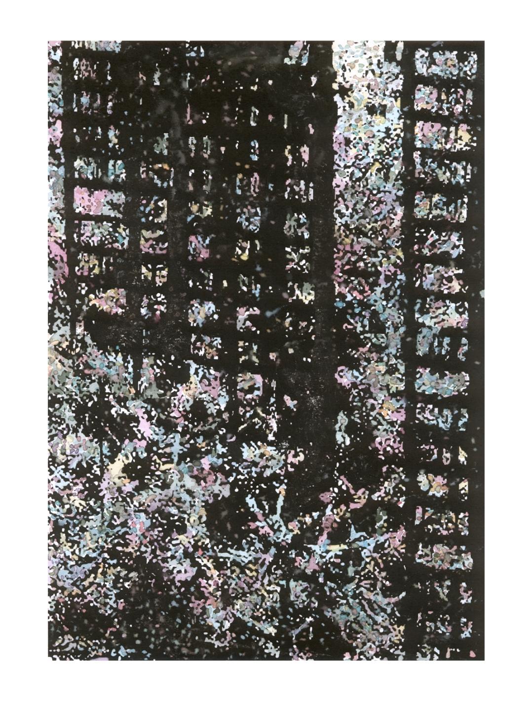 asbjorn-skou-lichen-algorithm