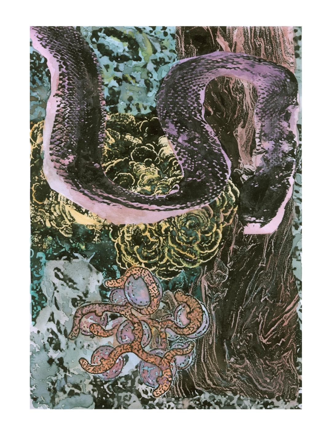 asbjorn-skou-snake-insta