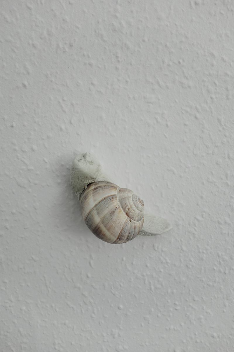 8 Asbjørn_skou_sif_itona_westerberg small